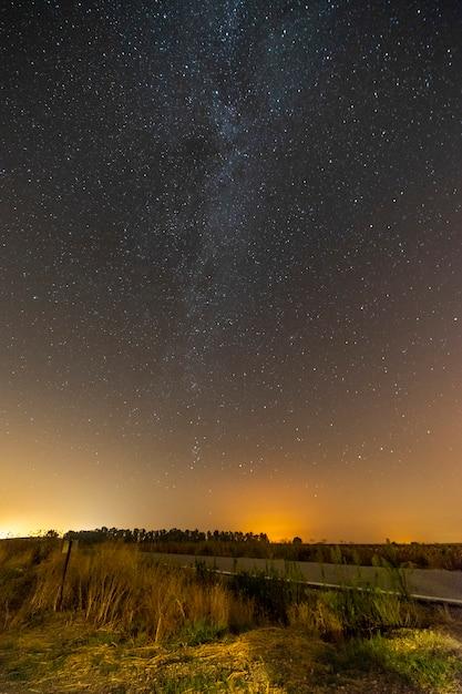 Vertikale aufnahme einer leeren straße, umgeben von grün unter einem sternenhimmel Kostenlose Fotos