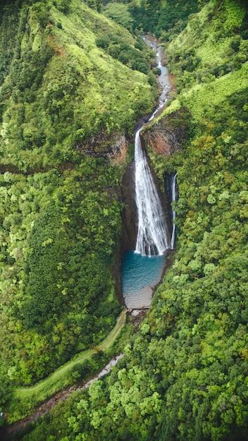 Vertikale hochwinkelaufnahme des wasserfalls unter dem wald, der in kauai, hawaii gefangen genommen wird Kostenlose Fotos