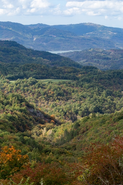 Vertikale hohe winkelaufnahme einer schönen landschaft in istrien, kroatien Kostenlose Fotos