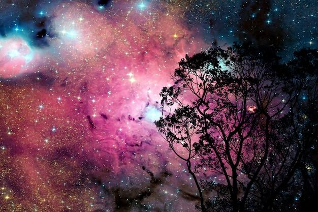 Verwischen sie galaxiennebel zurück auf nachtwolkenhimmel auf baum Premium Fotos