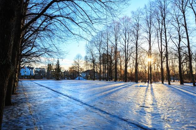 Vigeland park winter oslo norwegen Premium Fotos