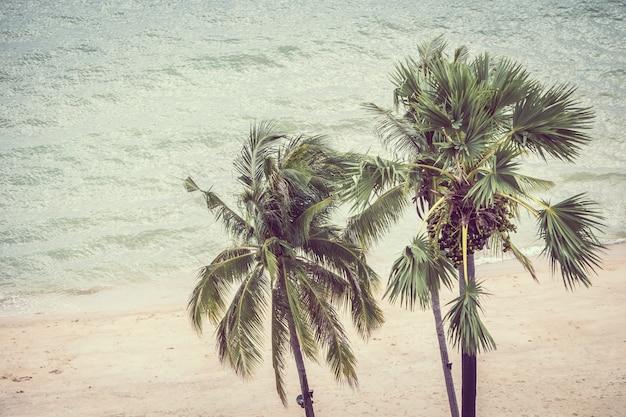 Vintage palme Kostenlose Fotos