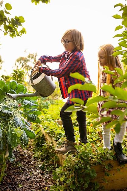 Vitamine. glücklicher bruder und schwester, die zusammen äpfel in einem garten draußen sammeln. Kostenlose Fotos