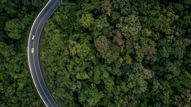 Vogelperspektive über tropischem baumwald mit einer straße, die mit auto, forest road durchläuft. Premium Fotos