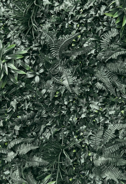 Voller rahmen von grünpflanzen Kostenlose Fotos