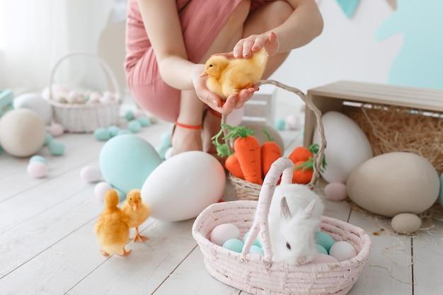 Vorbereitung für osterferien. frau richtet entlein und kaninchen unter gemalten eiern ein Kostenlose Fotos