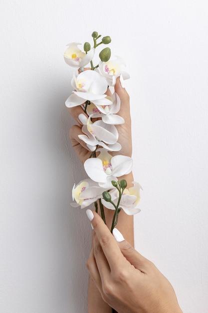 Vorderansicht der hände, die orchidee anhalten Kostenlose Fotos