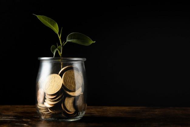 Vorderansicht der pflanze, die vom glas mit münzen und kopienraum wächst Kostenlose Fotos
