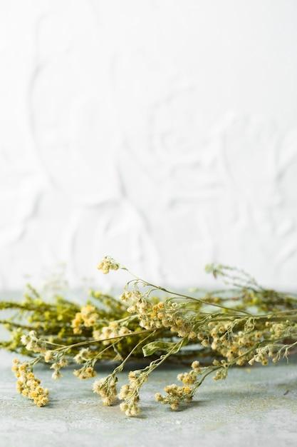 Vorderansichtblumenstrauß von hautpflegeblumen Kostenlose Fotos