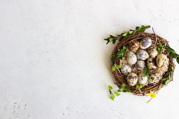 Wachtel-ostereier mit frühlingsgrün verlässt im nest. Premium Fotos
