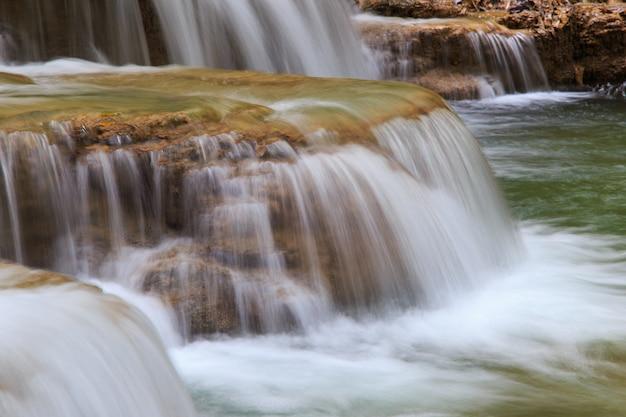 Wässern sie das fließen über felsen in wasserfallkaskade in einem wald Premium Fotos