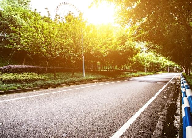 Wald mit einer straße Kostenlose Fotos