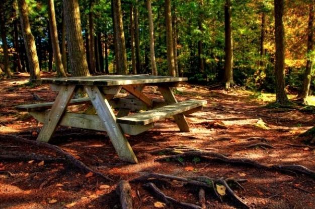 Wald picknicktisch hdr Kostenlose Fotos