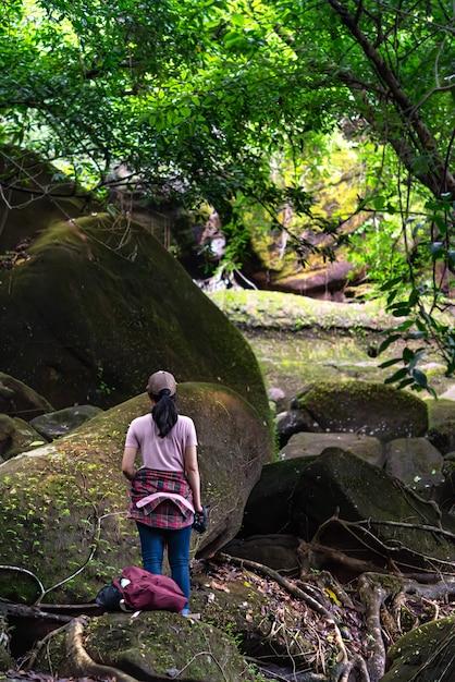 Wandererreise im regenwald Premium Fotos