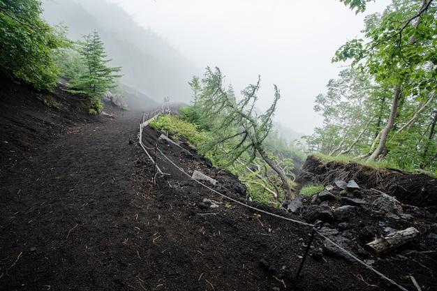 Wandern in fuji berg mit nebel Premium Fotos