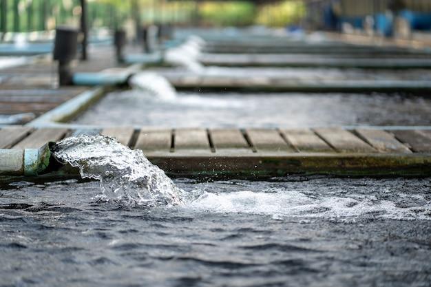 Wasserdurchfluss-behandlungssystem vom wasserpumpenrohr. das wasser wurde durch rohr-pvc abgelassen. industrielle abwasserbehandlung. Premium Fotos