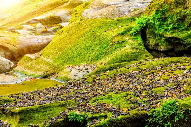 Wasserfälle berge natur creeks blätter reflexion Kostenlose Fotos
