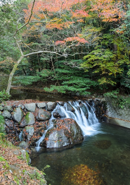 Wasserfall an nationalpark minoo oder minoh im herbst, osaka, japan Premium Fotos