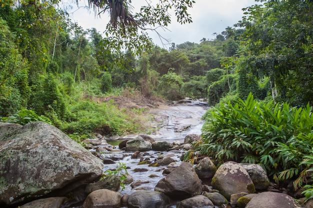 Wasserfall grauna des schönen weißen steins, paraty - grauna rio de janeiro Premium Fotos