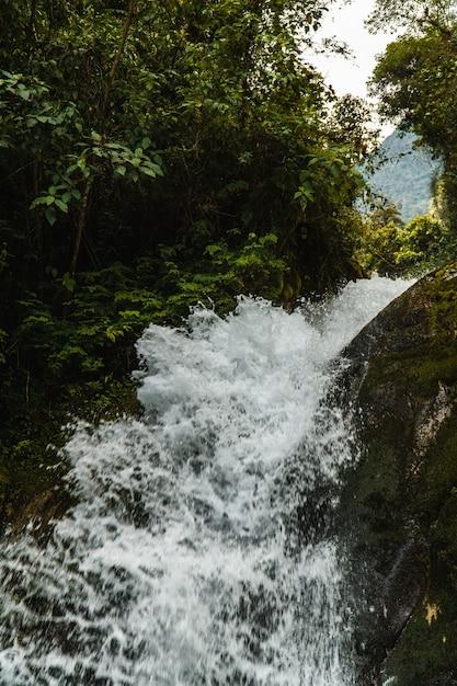 Wasserfall im nebelwald von peru Premium Fotos