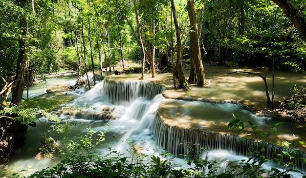 Wasserfall, waldhintergrund, landschaft Premium Fotos