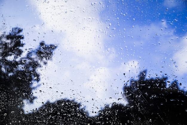 Wassertropfen auf naturhintergrund Kostenlose Fotos