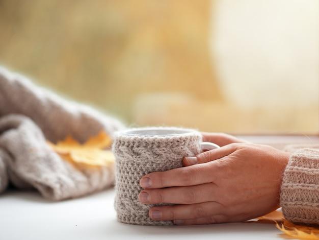 Weibliche hände in einer strickjacke, die einen tasse kaffee auf dem herbstfenster im haus hält Premium Fotos