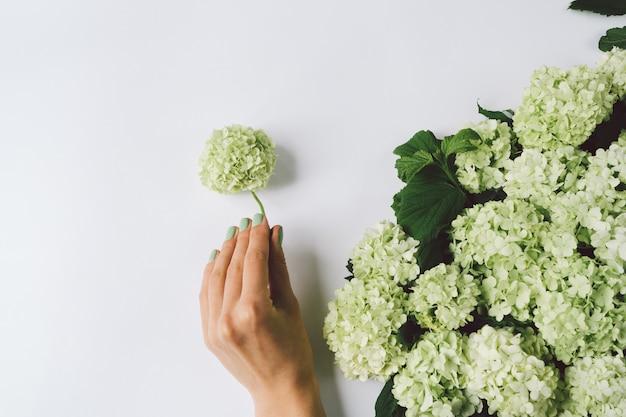 Weibliche hand, die dekoration von grünen blumen auf einem weißen hintergrund macht Premium Fotos