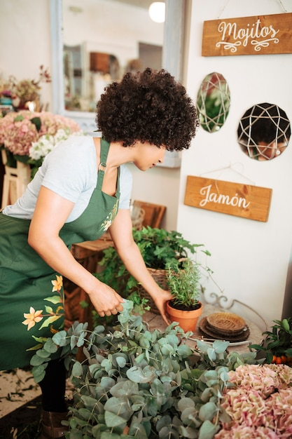 Weiblicher florist, der topfpflanze im shop vereinbart Kostenlose Fotos