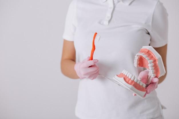 Weiblicher zahnarzt mit den zahnheilkundehilfsmitteln getrennt Kostenlose Fotos