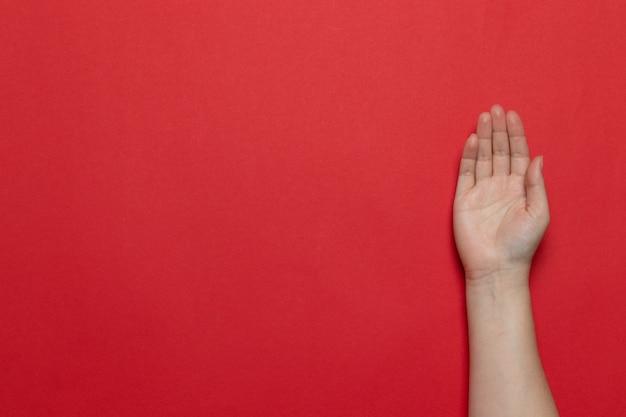 Weibliches kaukasisches sauberes handzeichen einer offenen palme auf rotem hintergrund Premium Fotos