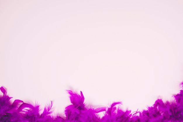 Weiche federn auf dem hellrosa hintergrund mit platz für das schreiben des textes Kostenlose Fotos