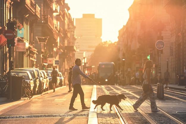 Weicher fokus auf mann machen sie einen spaziergang mit hunden während des sonnenuntergangs in bordeaux stadt Premium Fotos