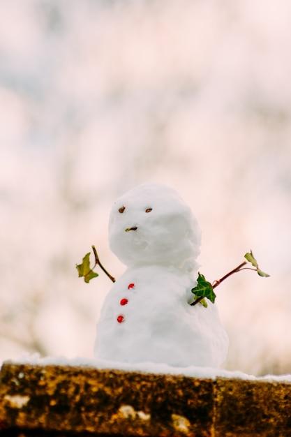 Weihnachten Premium Fotos