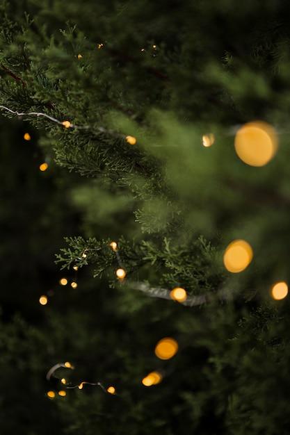 Weihnachtsdekoration mit schönem baum und lichtern Kostenlose Fotos