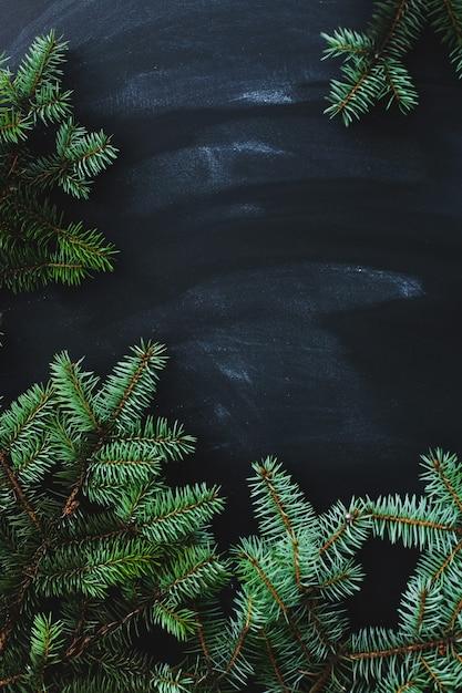 Weihnachtstanne auf der dunklen oberfläche Kostenlose Fotos