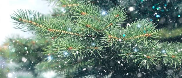 Weihnachtswinterhintergrund. weihnachtsbaum mit schnee und bokeh lichter, festlicher hintergrund Premium Fotos