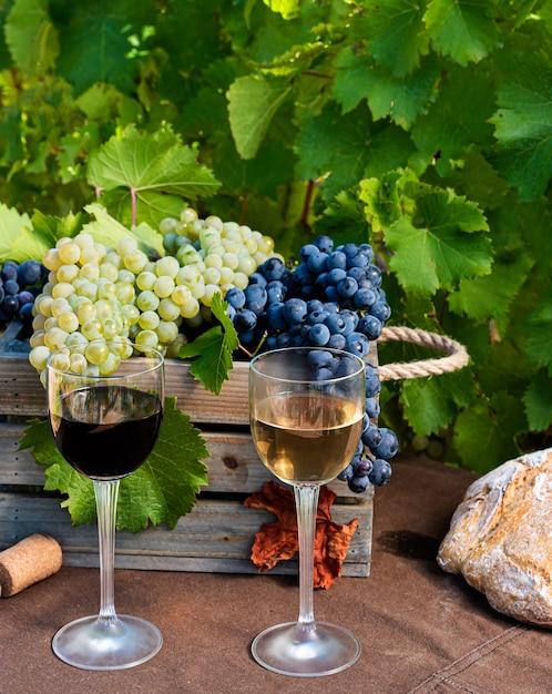 Weingläser mit trauben und korken auf weinberghintergrund Premium Fotos