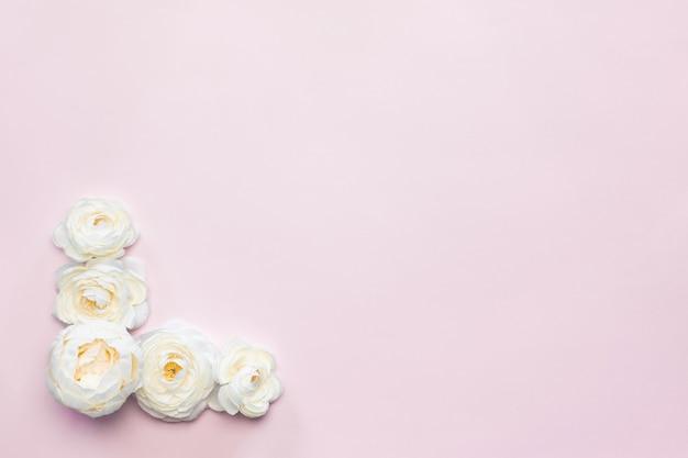 Weiße blumen zusammensetzung rosa hintergrund Kostenlose Fotos