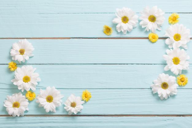 Weiße chrysantheme und gelber huflattich auf blauem hölzernem hintergrund Premium Fotos