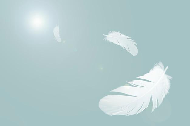 Weiße federn fliegen in der luft. Premium Fotos