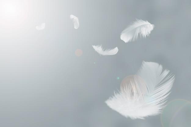 Weiße federn schweben in der luft Premium Fotos