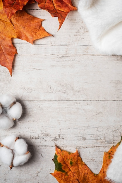 Weiße flauschige pullover und ahorn herbstlaub Premium Fotos