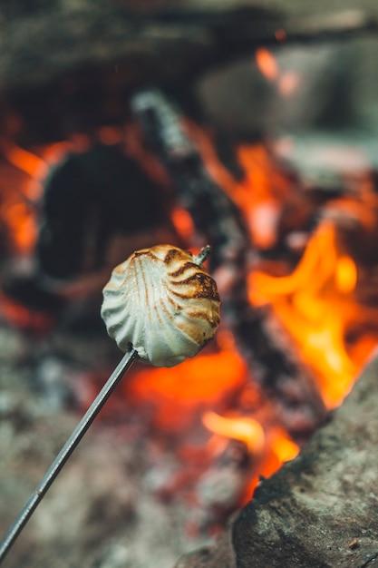 Weiße marshmallows am stiel werden über dem feuer gebraten. marshmallows werden am lagerfeuer in der natur gebraten. Premium Fotos