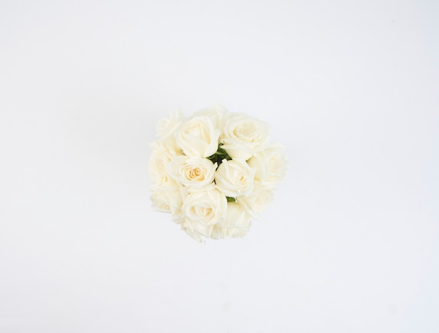 Weiße rosen blumen Premium Fotos