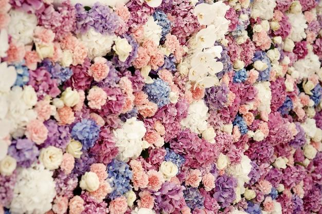 Weiße rosen und rosa hortensien machen schöne blumenwand Kostenlose Fotos