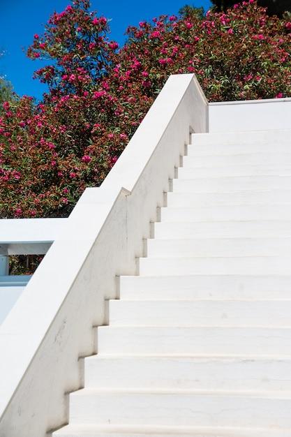 Weiße treppe draußen am sonnigen tag Premium Fotos