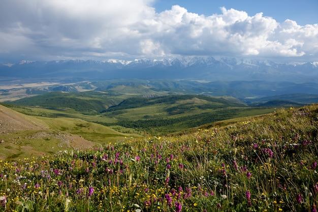Weiße wolken über schneebedeckten bergen und grünen hügeln, blumenfeldern Premium Fotos