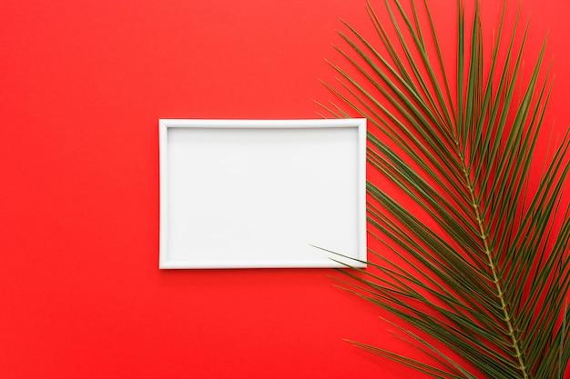 Weißer rahmen mit palmblättern auf heller roter oberfläche Kostenlose Fotos