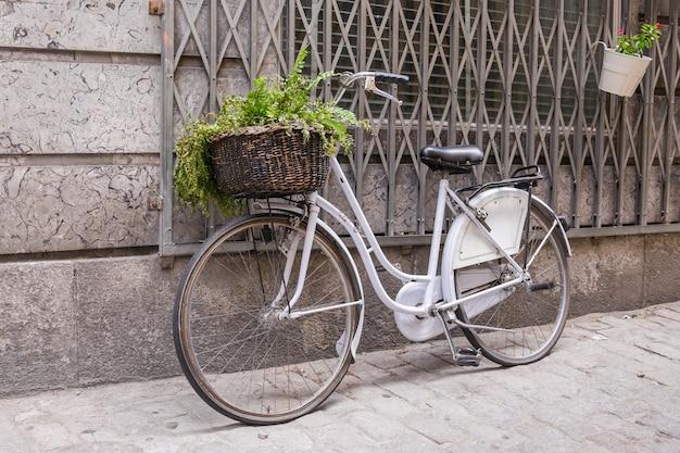 Weißes fahrrad mit weidenkorb Premium Fotos